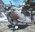 Xbox PvE New Official Servers ( Snow Owl )
