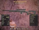 Anti-Armor Prime Hunting Rifle - Level 50