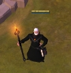 400/400 Fire Staff, 400/400 spears, 400/400 Cloth, Leather, Plate armors, T8 Leather getherer, 140m crafting fame, first owner