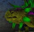 PC PVE NEW ABERRANT ANKYLOSAURS 740 DMG BASE (884 IMPRINTED)