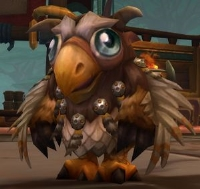 Moonkin Hatchling--Removed from game unique PET. Last item.