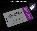 Lab. Violet Keycard - Cheap and Fast delivery