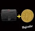 25 Physical Bitcoin + Small S I C C case In Stock + Instant Delivery - %100 Safe