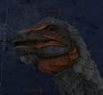 PC PVE NEW TOP MALE THERIZINOSAURS LVL 377 BASE 1302DMG (1560 DMG IMPRINTED)