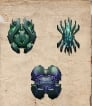 PC PVE NEW ABERRATION ARTIFACTS X3 FOR BOSS FIGHT