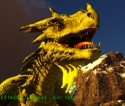 Fire Wyvern Level 160,Points Available 46,clone male,PC PVE New Offcial server