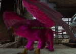 Level 207 Magenta Griffin Clone PC PVE New