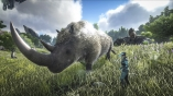 Woolly Rhino with the best stats for pvp l ARK OFFICIAL SMALL TRIBES PVP STEAM-EPICGAMES ONLY